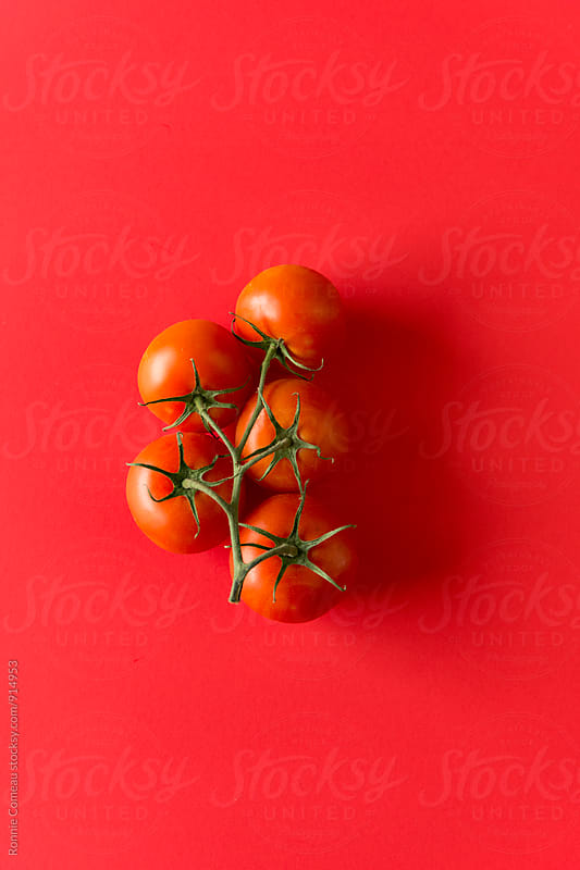 Tomatoes On The Vine On Red Background by Ronnie Comeau for Stocksy United
