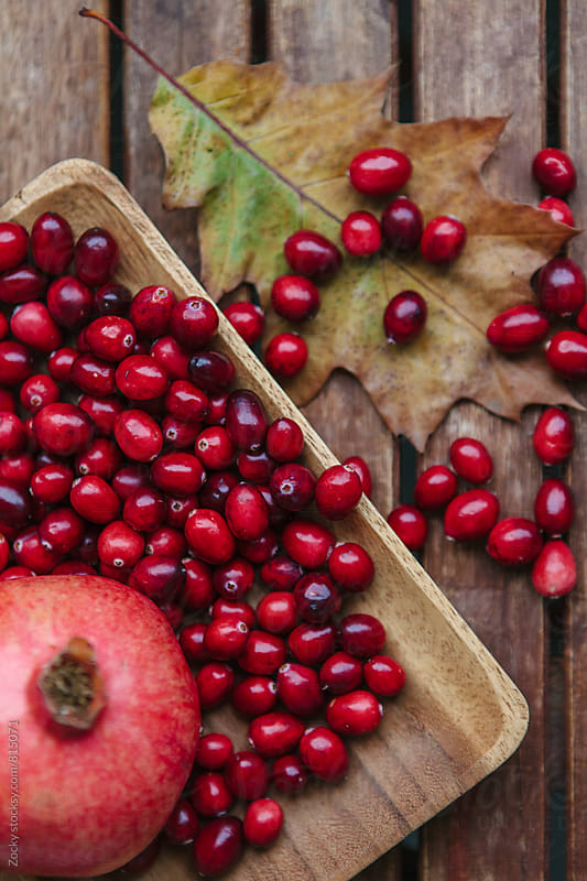 Fresh Cranberries and pomegranate by Zocky for Stocksy United