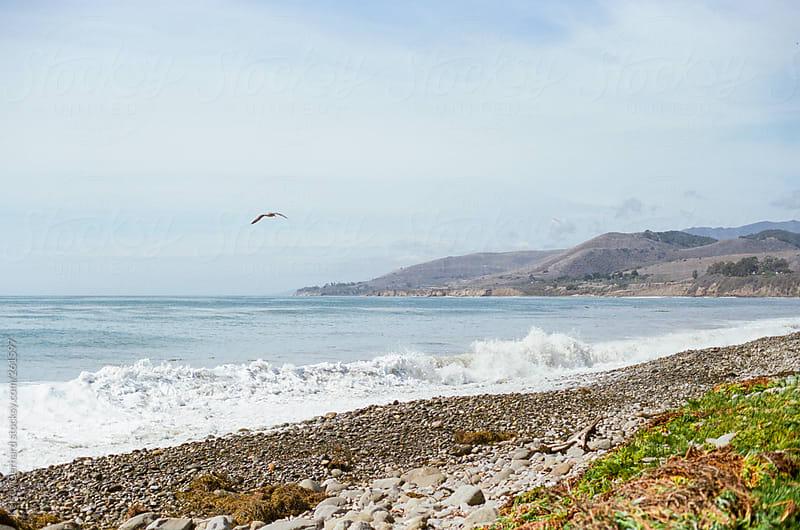 California Coastline on film by Kelsey Gerhard for Stocksy United