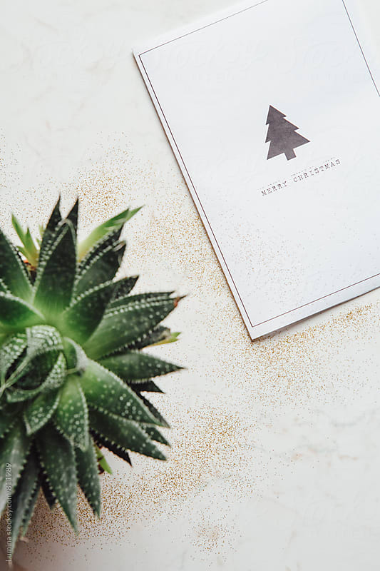Christmas Card by Lumina for Stocksy United