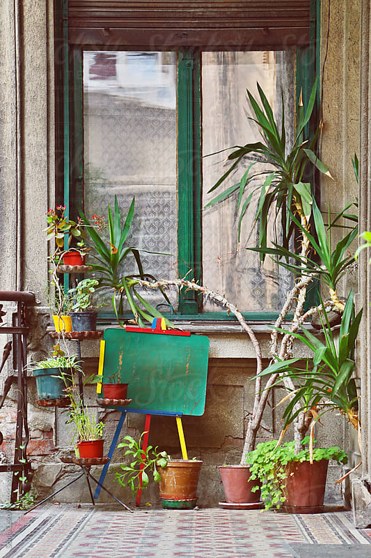 window and plants by Sonja Lekovic for Stocksy United