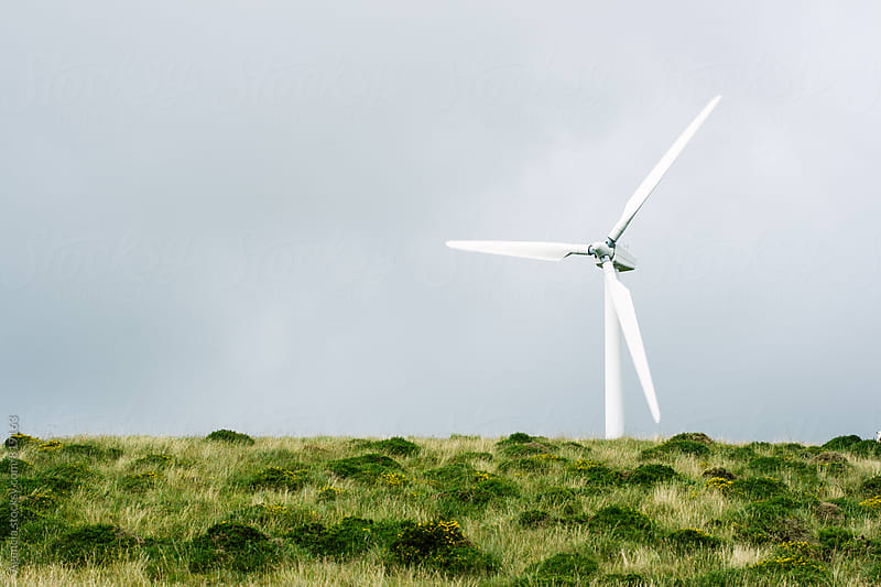 Wind Power by Agencia for Stocksy United