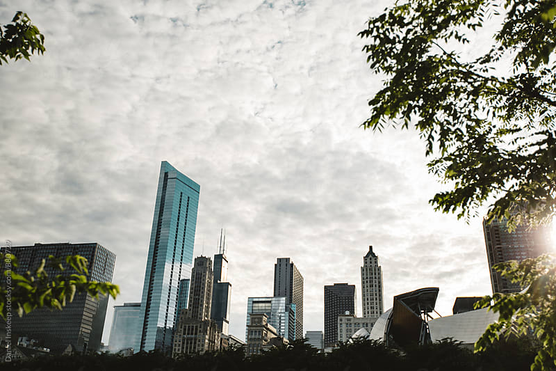 Chicago Skyline from Maggie Daley Park by Daniel Inskeep for Stocksy United