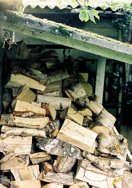 A log pile by Helen Rushbrook for Stocksy United