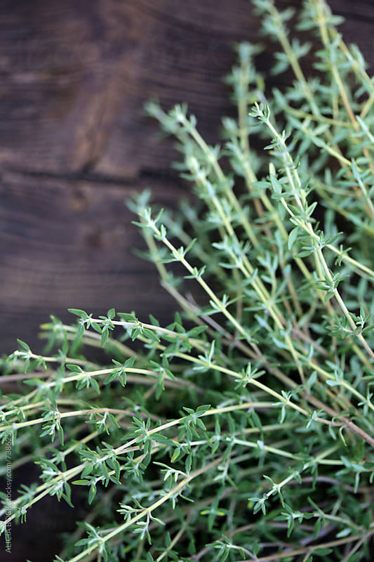 A Bundle Of Fresh Picked Thyme On An Old Wood Table by ALICIA BOCK for Stocksy United