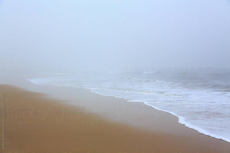 Beach by alan shapiro for Stocksy United