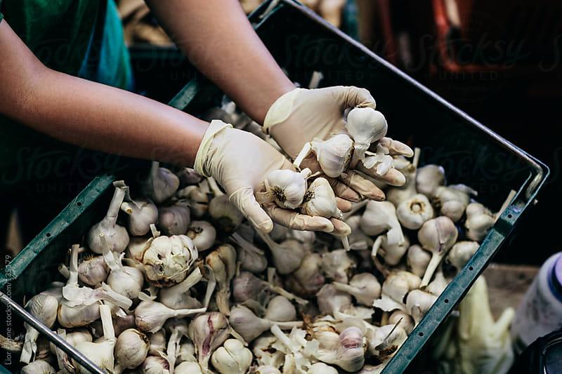 Farmer's hands holding organic raw garlics by Lior + Lone for Stocksy United