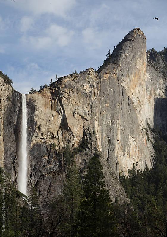 Yosemite Falls (and Raven) by Maximilian Guy McNair MacEwan for Stocksy United
