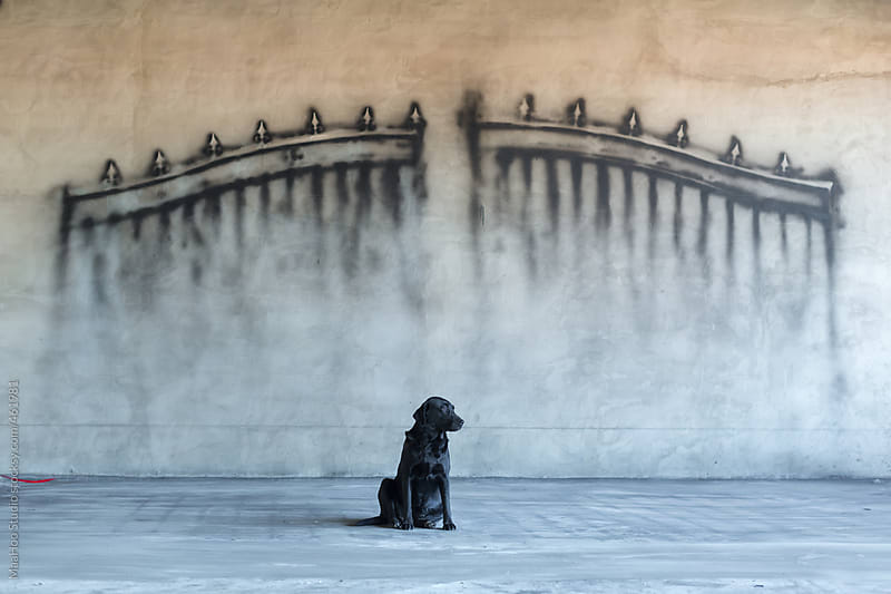 A dog sitting in front of a wall with a gate painting on it by MaaHoo Studio for Stocksy United