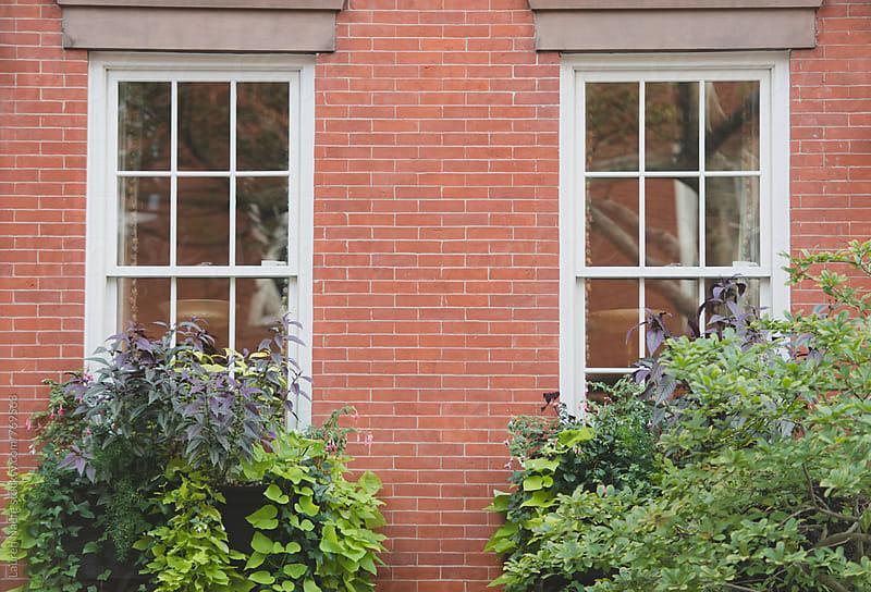 Brick brownstone facade by Lauren Naefe for Stocksy United