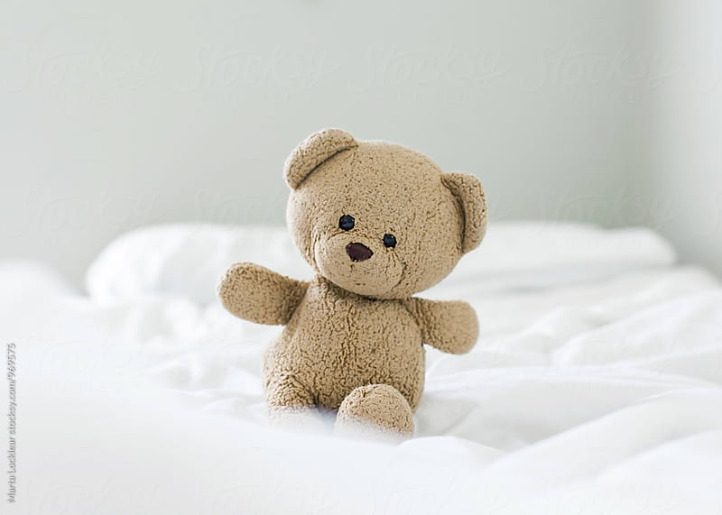 Teddy Bear in bed by Marta Locklear for Stocksy United