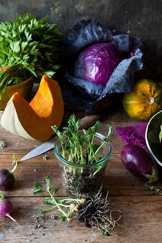 Messy kitchen table top with vegetables and herbs from the market by Nadine Greeff for Stocksy United