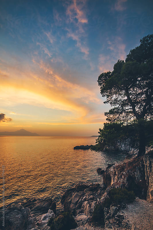 Beautiful sunrise above the Aegean sea with coastline and tree in the foreground by Aleksandar Novoselski for Stocksy United
