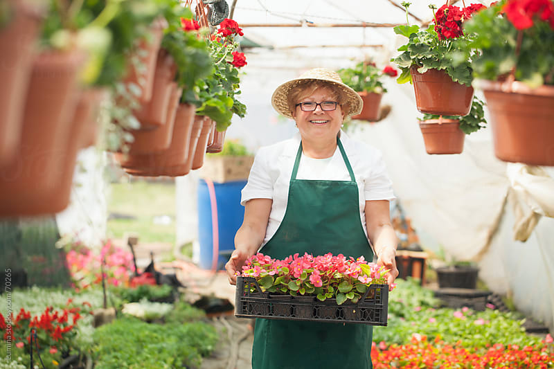 Woman Holding Flowers at a Nursery  by Lumina for Stocksy United