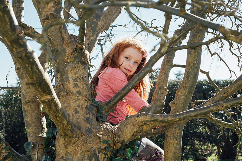 An eight year old girl sitting in a tree in the English countryside. by Craig Holmes for Stocksy United