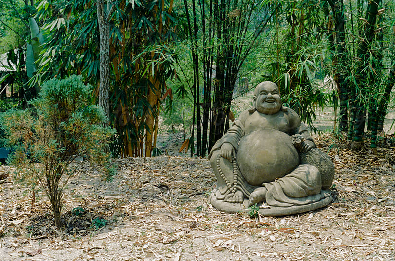 Hotei Statue in the jungle by Yury Goryanoy for Stocksy United