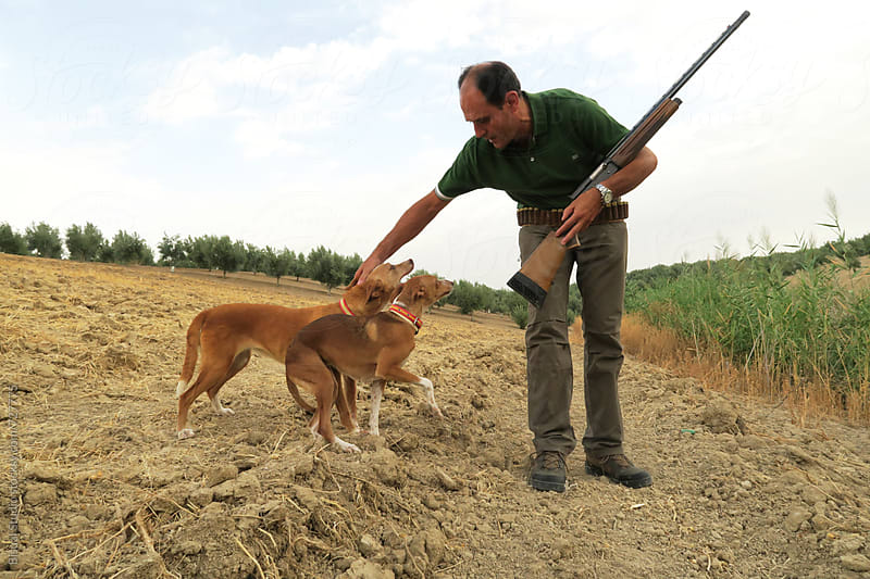A hunter playing with their dogs in the countryside by Bisual Studio for Stocksy United