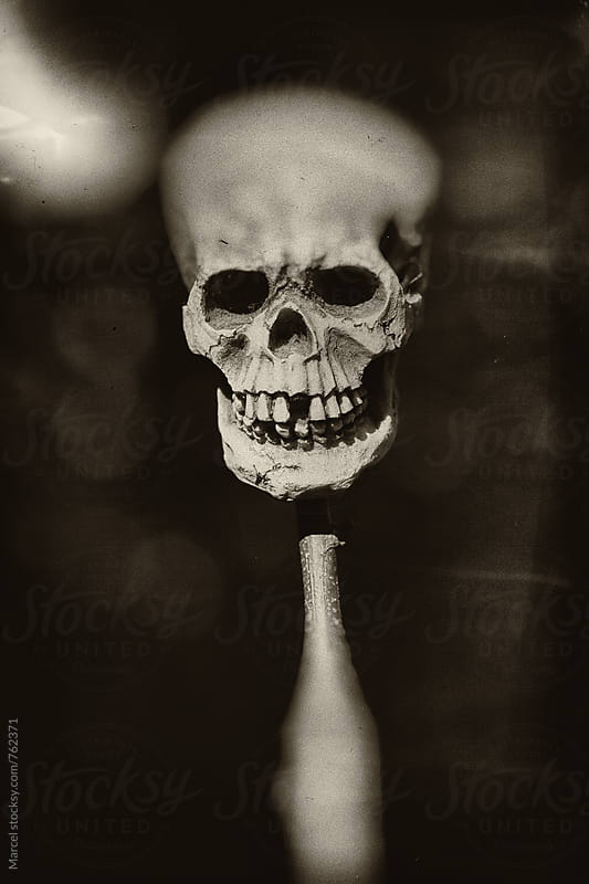Grainy b&w image of a skull on a stick by Marcel for Stocksy United