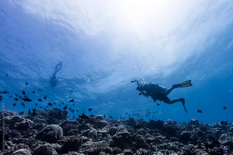 take photo for Free diver by Song Heming for Stocksy United