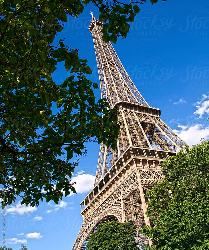 Eiffel Tower and Green Trees by Victor Torres for Stocksy United