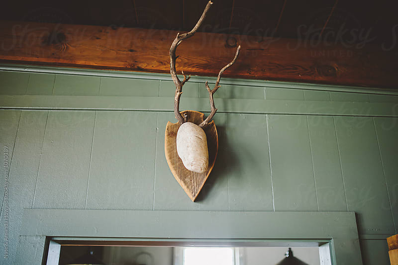 mounted antlers by Nate & Amanda Howard for Stocksy United