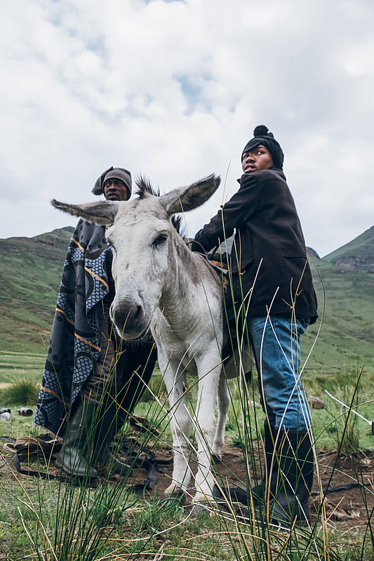 Basotho herdsmen packing their donkey for a trek by Micky Wiswedel for Stocksy United