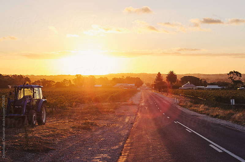 Rural roads at sunset in Australia by Dominique Chapman for Stocksy United