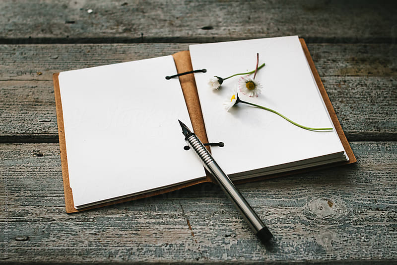 Daisies on a blank page of a notebook. by Helen Rushbrook for Stocksy United