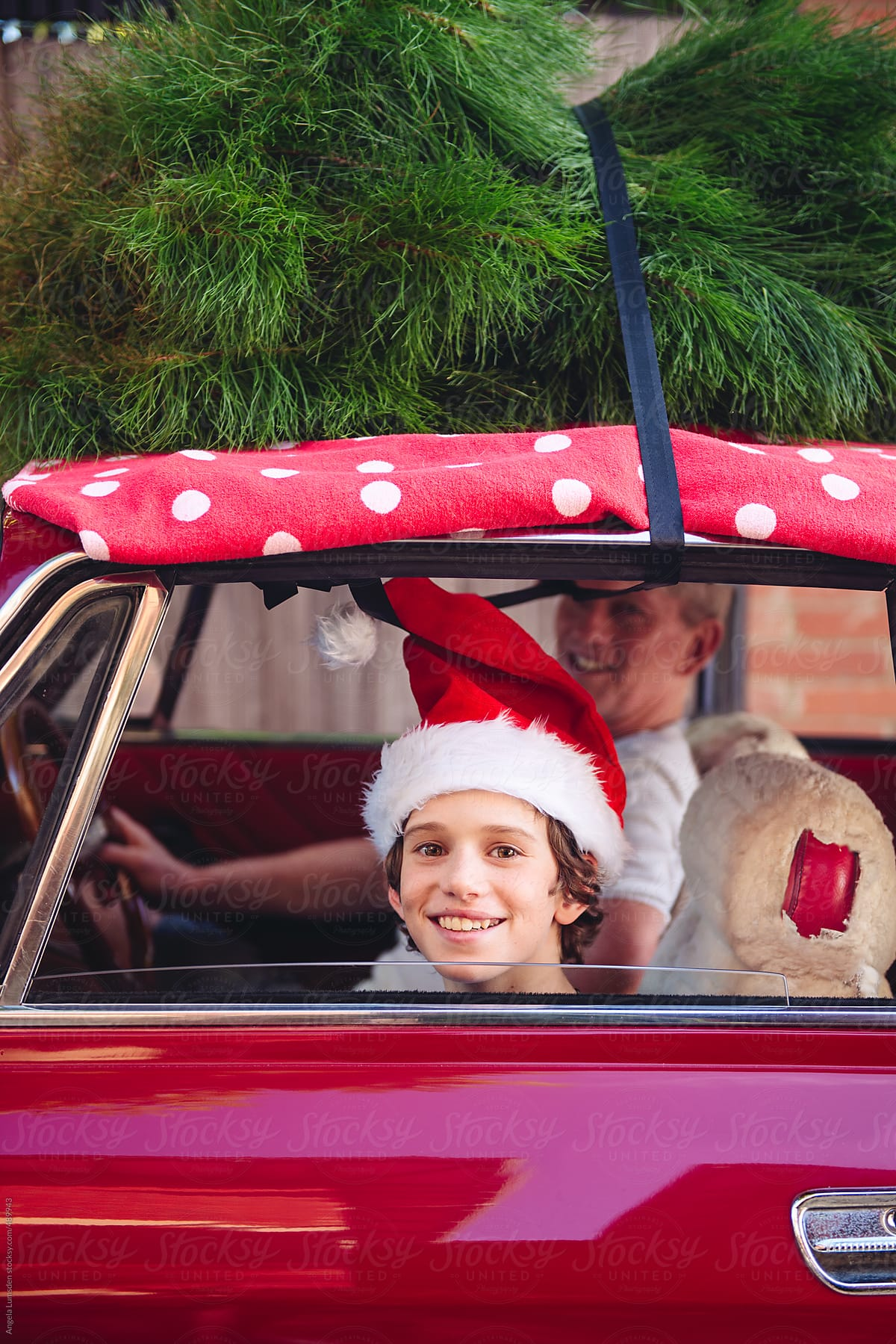 668741a20197f Boy wearing a santa hat smiles while sitting in a red car with a christmas  tree