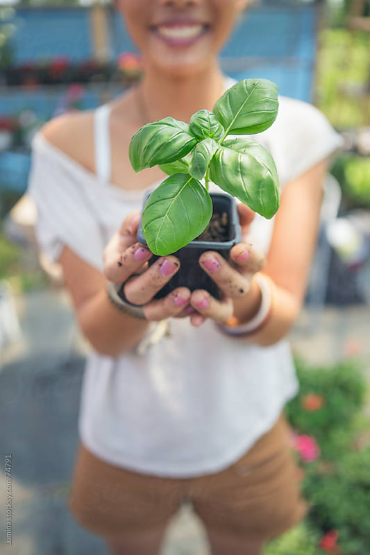 Woman Holding a Potted Plant by Lumina for Stocksy United