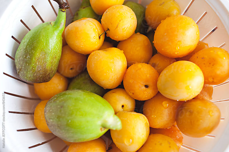 Homegrown organic yellow plums and figs collected from yard by Natalie JEFFCOTT for Stocksy United