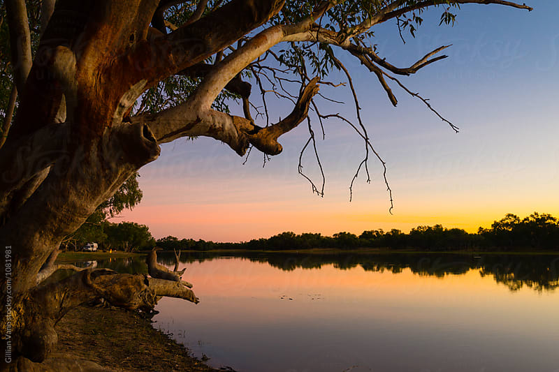 sunset on the billabong by Gillian Vann for Stocksy United