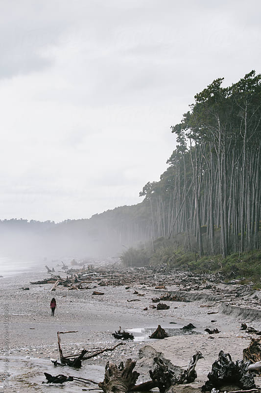 A woman walking along a tree lined beach by Gary Parker for Stocksy United