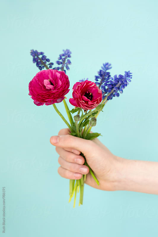 Hand holding bunch of flowers by Ruth Black for Stocksy United