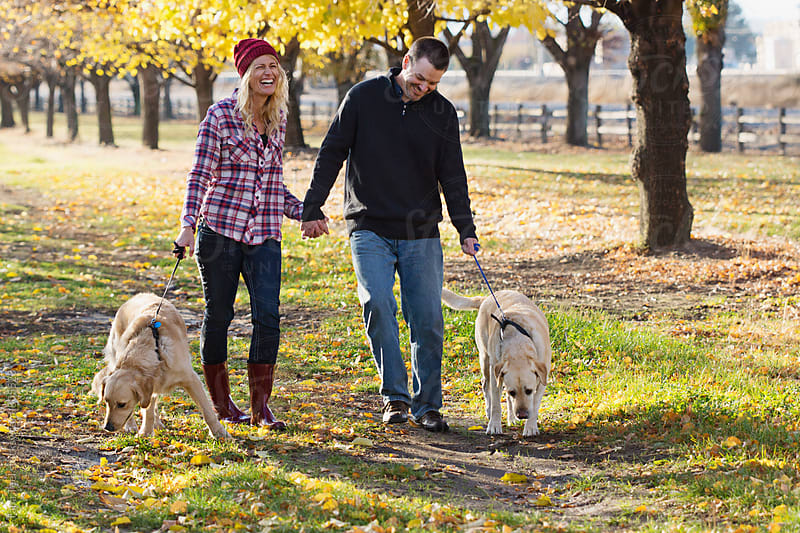 Couple walk their dogs on warm fall day by Tana Teel for Stocksy United