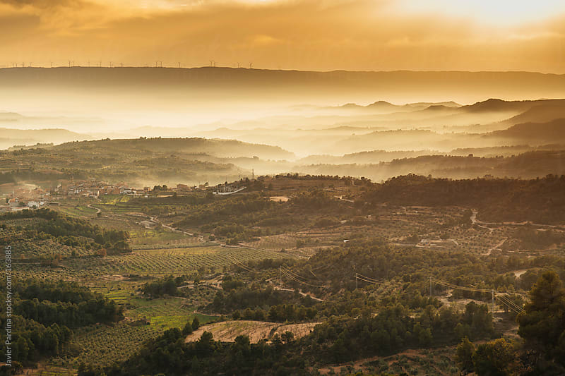 Landscpae at sunset with fog by Javier Pardina for Stocksy United