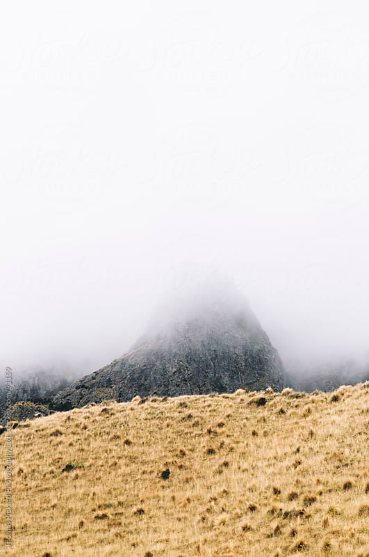 Hill shrouded in mist and cloud, New Zealand. by Thomas Pickard for Stocksy United