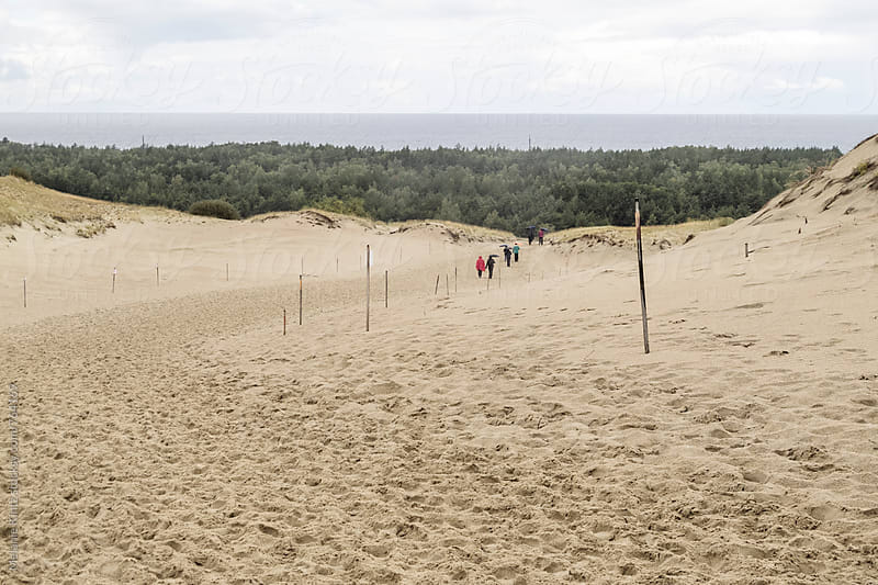 People leaving a tall dune at the Curonian Spit, Lithuania by Melanie Kintz for Stocksy United