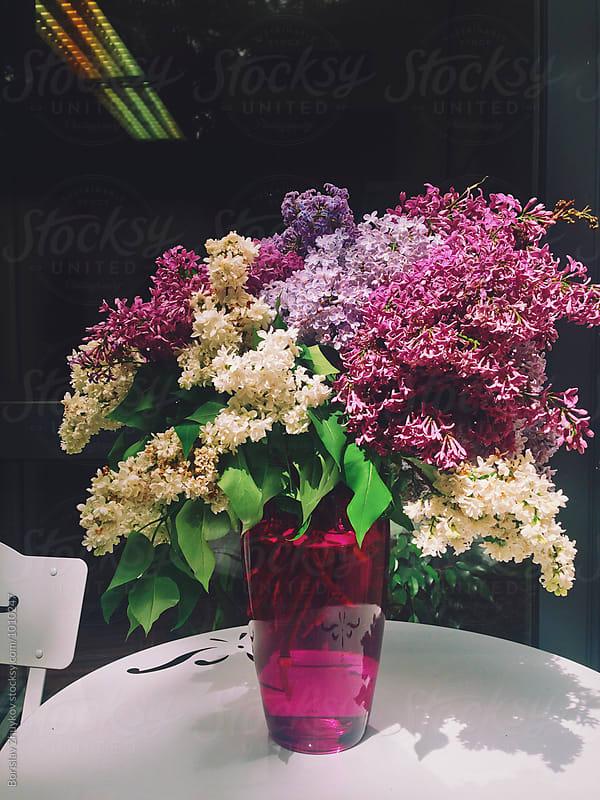 Lilacs in vase by Borislav Zhuykov for Stocksy United