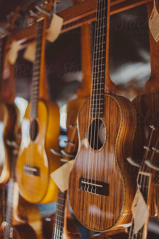 Rows of guitars by Carey Shaw for Stocksy United