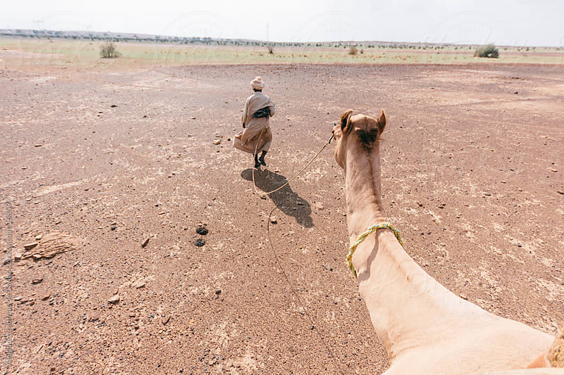 Pov riding a camel on desert by Alejandro Moreno de Carlos for Stocksy United