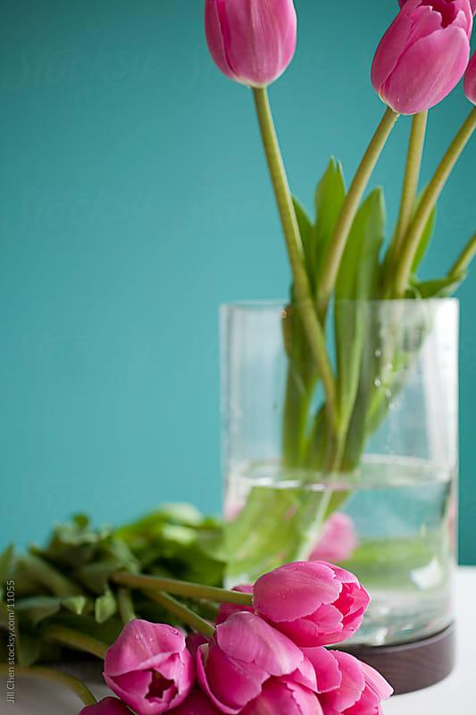 Tulip Arrangement by Jill Chen for Stocksy United