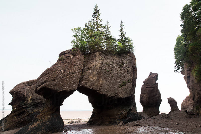 Rock formations on beach on Bay of Fundy during low tide by Matthew Spaulding for Stocksy United