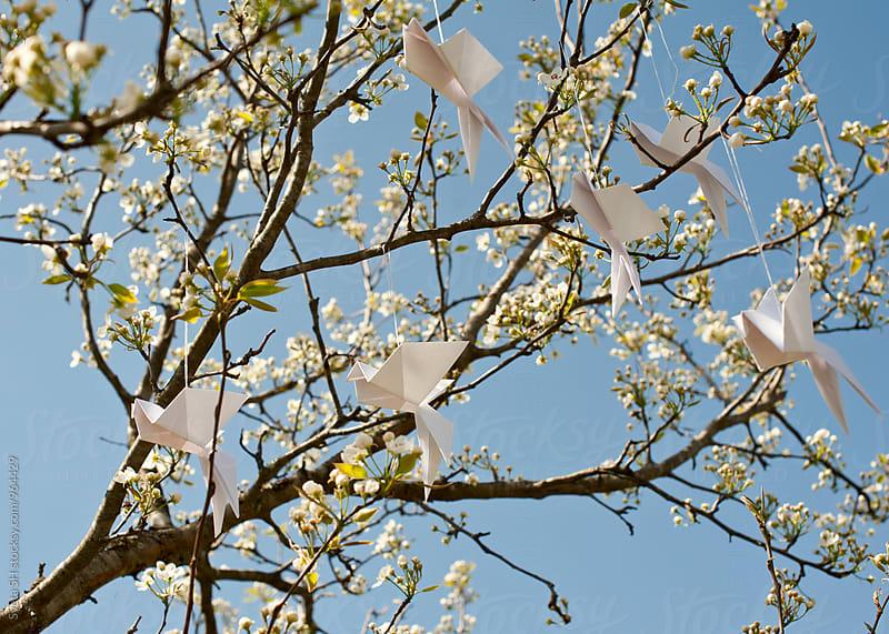 Paper birds by Svetlana Shchemeleva for Stocksy United