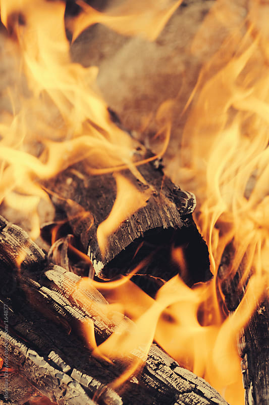 Burning woods and embers by Borislav Zhuykov for Stocksy United