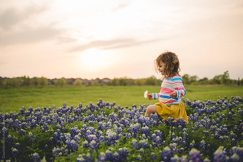Toddler girl playing in the bluebonnets by Courtney Rust for Stocksy United