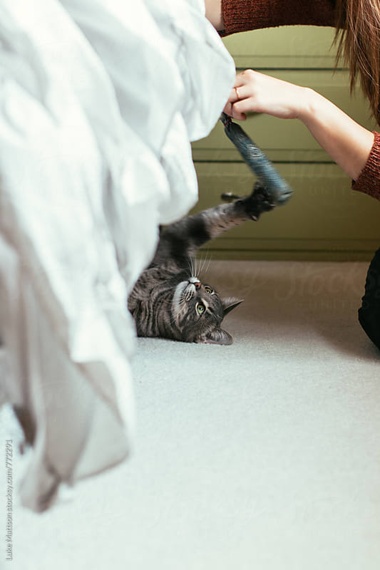 Young Woman Playing With Cat Underneath Bed by Luke Mattson for Stocksy United