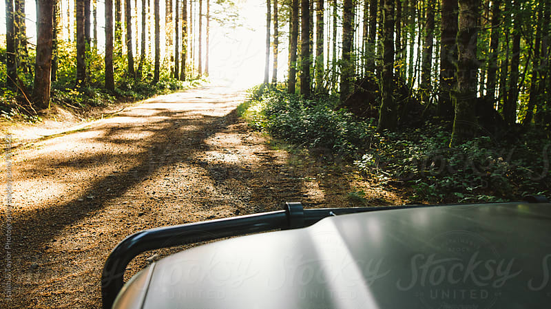 Truck driving through forest dirt road by Isaiah & Taylor Photography for Stocksy United