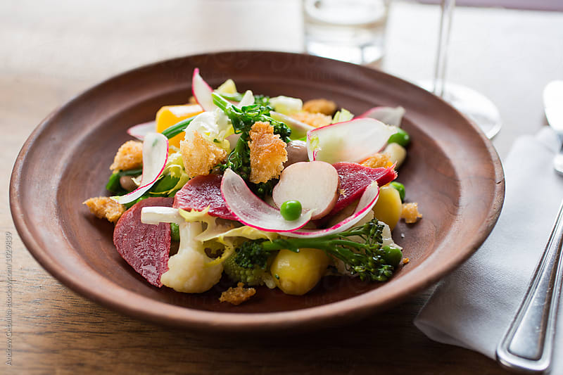 Summer Vegetable Salad in Brown Bowl by Andrew Cebulka for Stocksy United