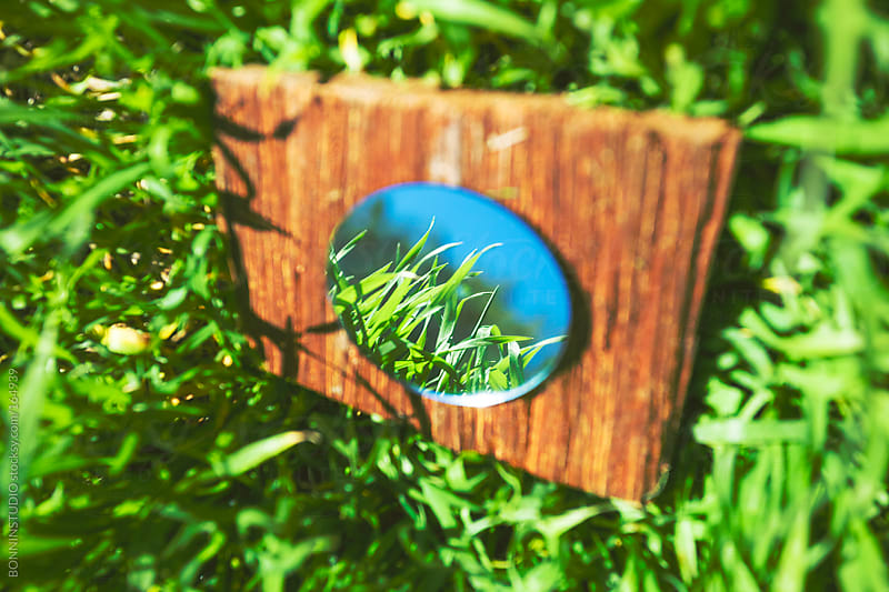 Rounded mirror reflecting fresh grass. by BONNINSTUDIO for Stocksy United